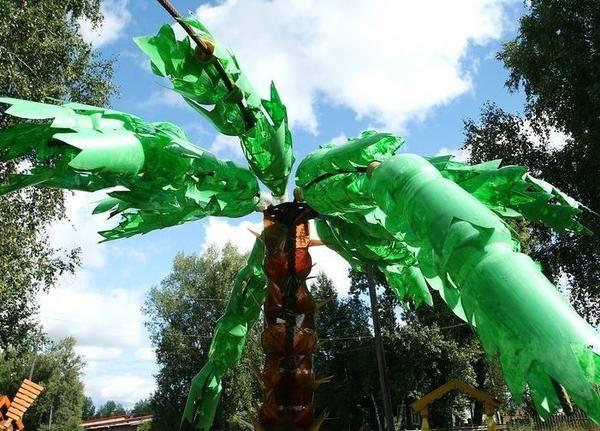 palmier de sticle din plastic, cu turistclub.tomsk.ru fotografii site-ului