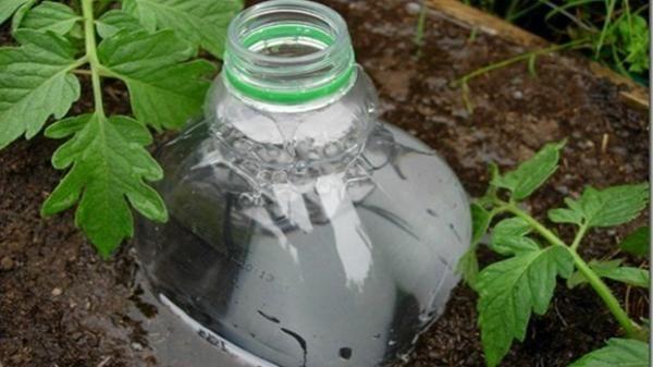 udare profundă cu sticle de plastic, foto cu întinderi de Internet