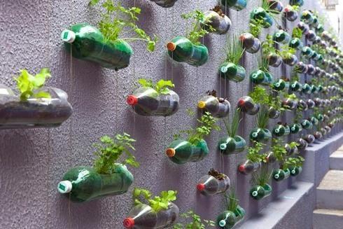 cvetlični lončki iz plastičnih steklenic, s fotografijami strani modeldesainrumah.com