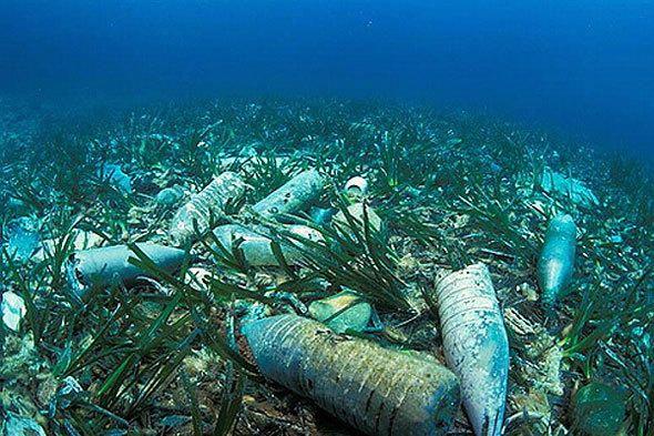 sticle de plastic de pe fundul mării, cu mumbaitalkies.in fotografii site-ului