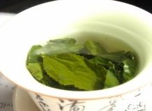 6 vprašanj o zelenem čaju