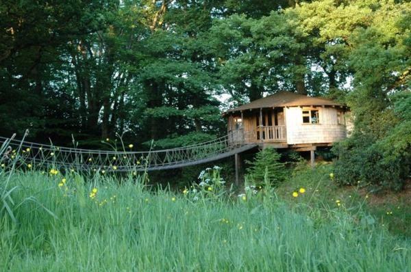 Hiša v gozdu