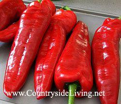Витамин С в продуктах. Красный сладкий перец - отличный источник витамина С. Перец