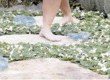 Босиком по саду за здоровьем
