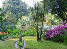 Чарующий сад хеллера