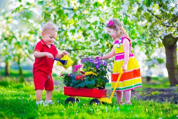 Farma odmor neće spriječiti igračke, vrt pribor imitator.