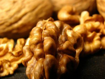 Черный грецкий орех и его целебные свойства