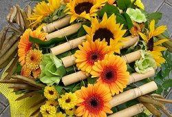 Flora: notranja oprema in praznovanja