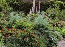 Дикий сад вильяма робинсона