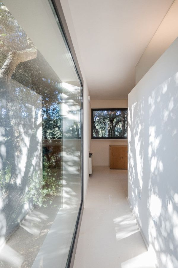 hiša v gozdu sassari13