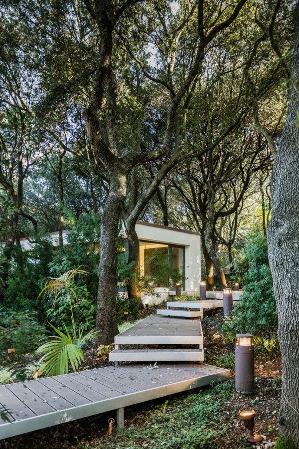 hiša v gozdu sassari2