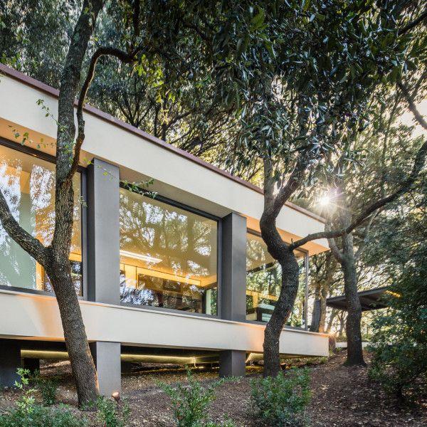 hiša v gozdu sassari3