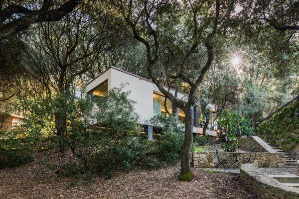hiša v gozdu sassari4