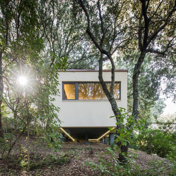 hiša v gozdu sassari6