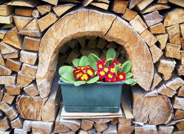 Držati drva za potpalu pravilno