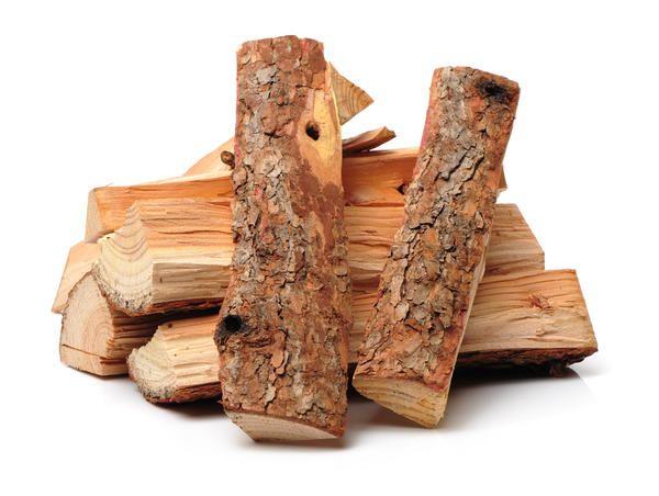 drvo četinara
