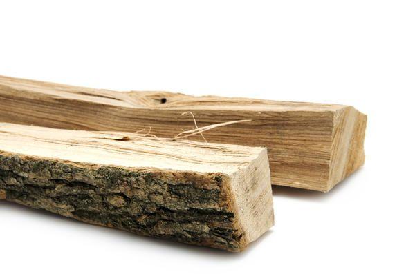 hrast drva