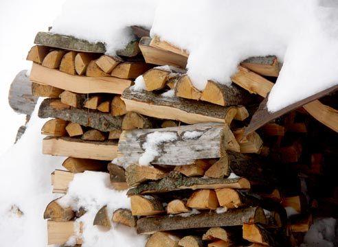 Drva pod snegom