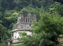 Amazon jungle skrij staro mesto