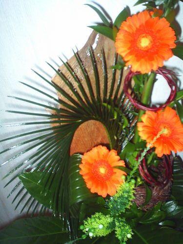 Фото цветов герберов - изысканная красота