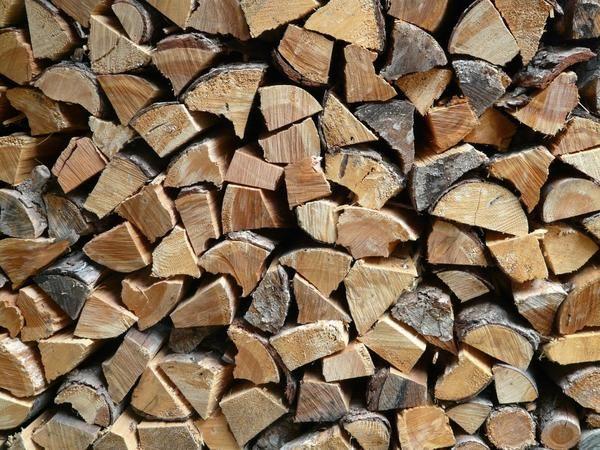 Kako in kje za shranjevanje drv