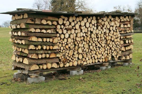 Woodpile potrebuje ne samo streho, ampak tudi temelj