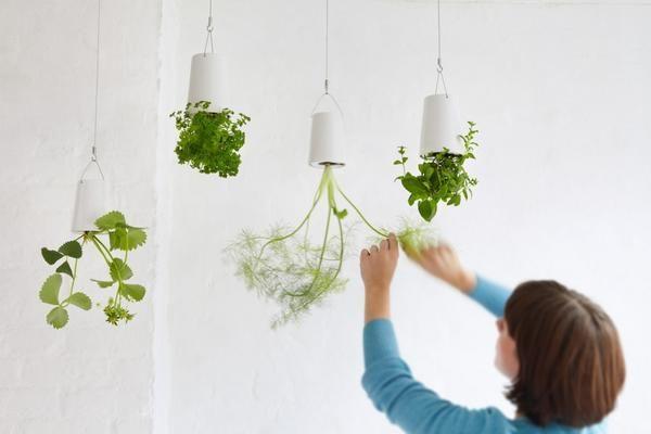 Подвесные конструкции Boskke Sky Planter. Фото с сайта http://designtherapy.it