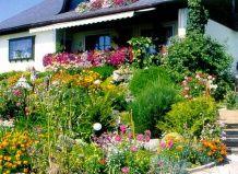 Голландские дворики