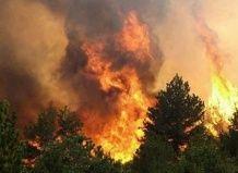 Burned Reserve Lugansk