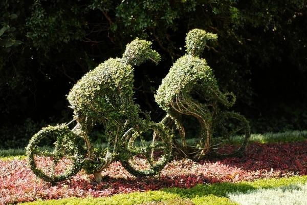Flowerbed - kolesarji