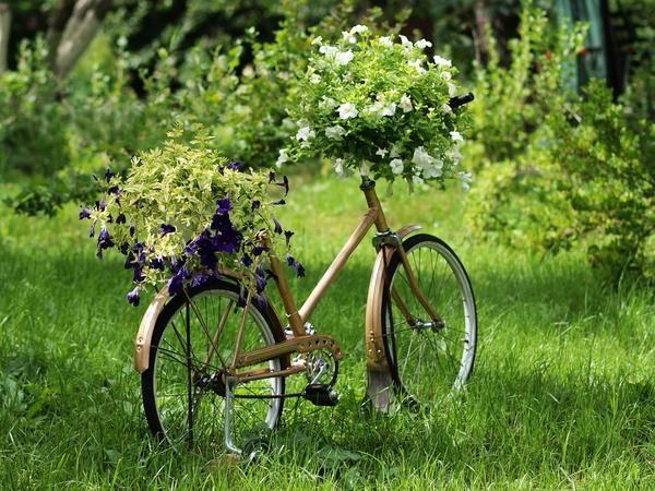 flowerbed za kolesa