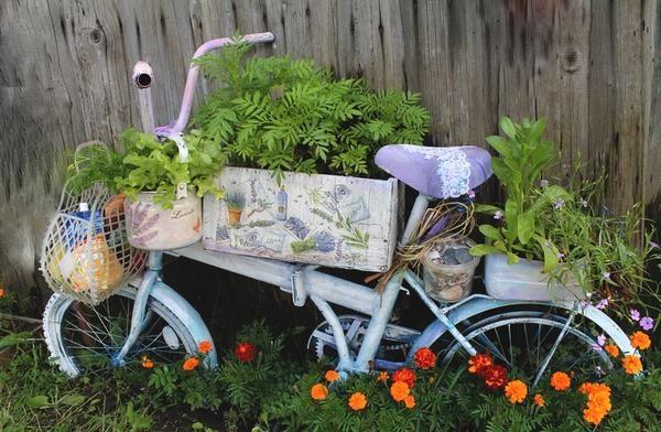 flowerbed kolo