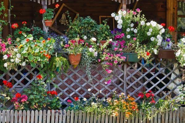 Ideje lepe lesene ograje za vikend