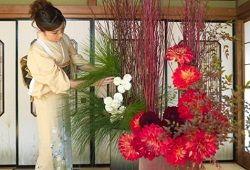 Ikebana: preučujemo načela sestave