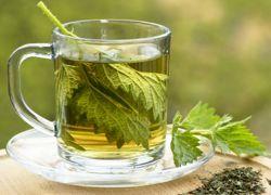 proprietăți medicinale urzica