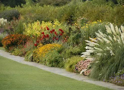 Mixborders cvetlični vrt krajine vrt slog