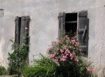 Итальянские дворики современный ландшафтный дизайн