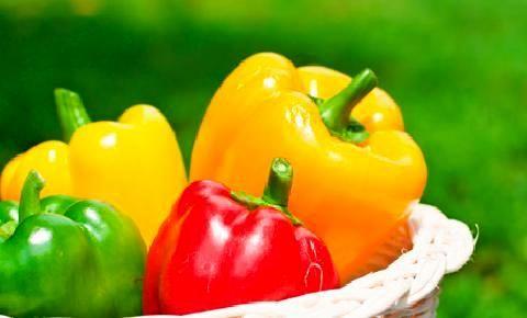 svojstva paprike