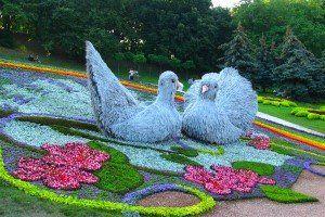 lepo flowerbed mesto