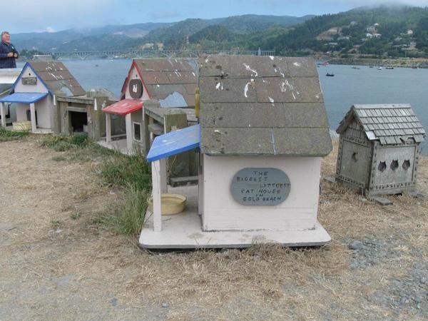 Орегон, кошачье поселение, фото с сайта http://city-data.com