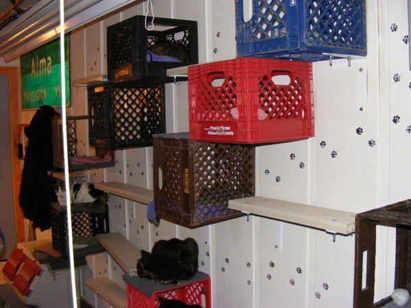 Кошачье обиталище из ящиков, фото с сайта http://empressjad.files.wordpress.com