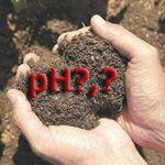 Kako ugotoviti kislost tal