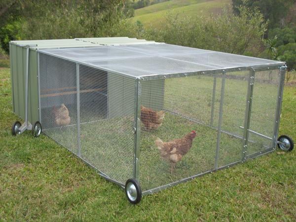 roll-cage pentru găini. Site Foto zawazy.ml