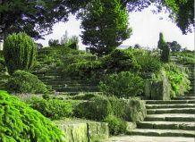 Как создать сад на склоне