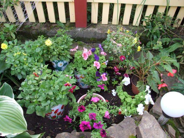 Če veliko praznega prostora, ga lahko uredi v posodo vrtu