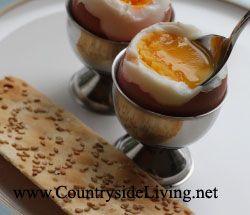 Jak vařit vejce