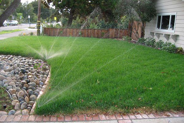 Система дождевания газона