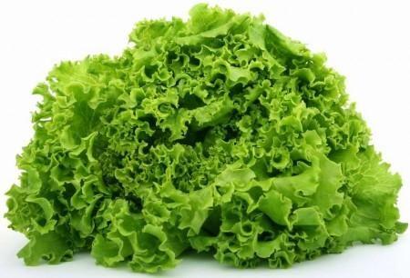 je korisna svojstva salate