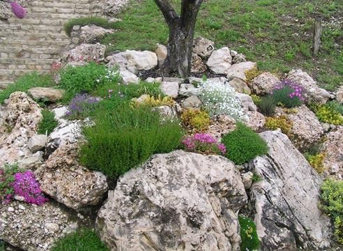 Рокарий, альпийская горка, камни