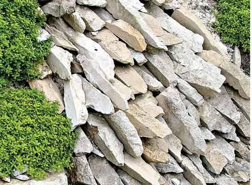 Kamni na vrtu